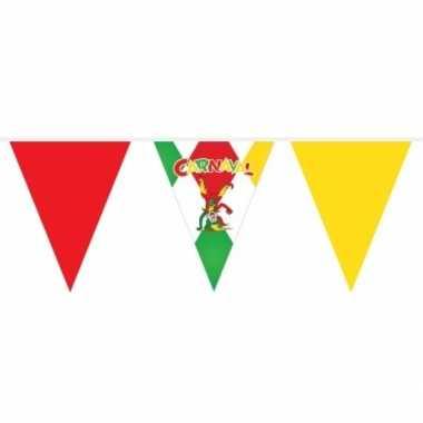 4x vlaggenlijn carnaval 10 meter
