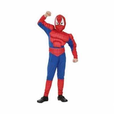 Feest spinnenheld carnavalspak