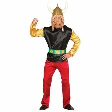 Gallier verkleed carnavalspak asterix voor volwassenen