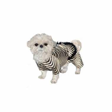 Honden zebra carnavalspak