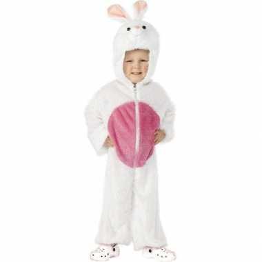 Kindercarnavalspak konijn