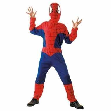 Spinnenheld carnavalspak