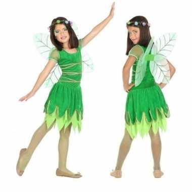 Toverfee/elfje fay verkleed carnavalspak/jurkje voor meisjes